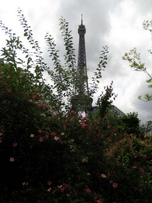 Eiffel Tower - View from the café at the Musée du quai Branly